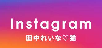 田中れいな猫Instagram