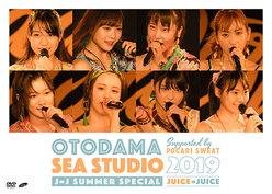OTODAMA SEA STUDIO 2019 supported by POCARI SWEAT J=J Summer Special: