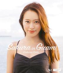Sakura in Guam: