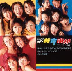 DVD・ザ・黄青あか: