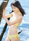 矢島舞美:Blue Wind
