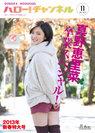 HELLO! PROJECT:ハロー!チャンネル Vol.11 2013年新春特大号〜真野恵里菜卒業スペシャル!〜」(特大ポスター付)