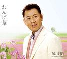 加川明:れんげ草