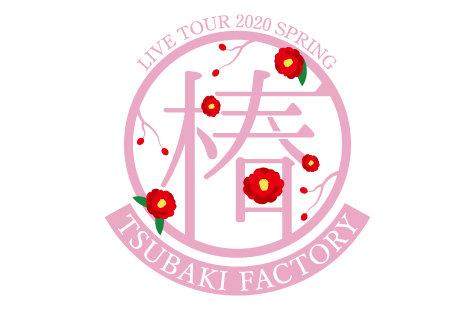 つばきファクトリー ライブツアー2020春 椿