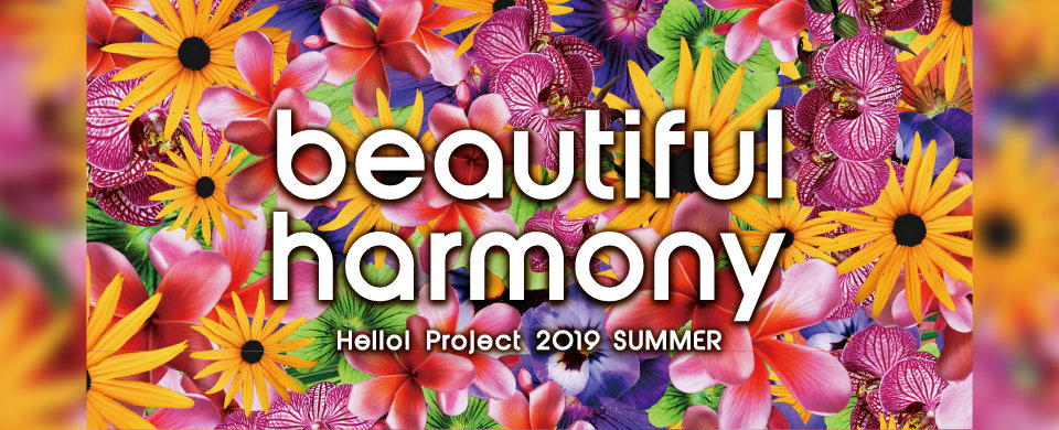 【HP】Hello! Project 2019 SUMMER「beautiful」「harmony」